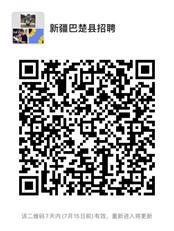 2020年新疆巴楚县中小学和幼儿园教师招聘500人简章(图1)